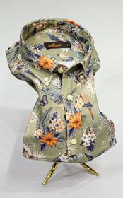 Morris linne